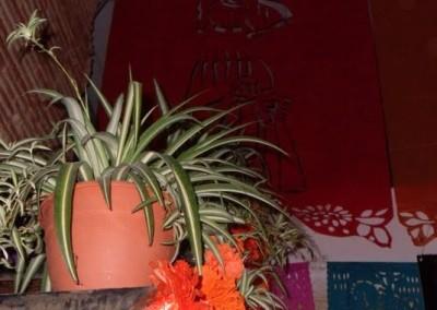 Asociacion-Cuahtemoc-Altar-de-Muertos-2011-5